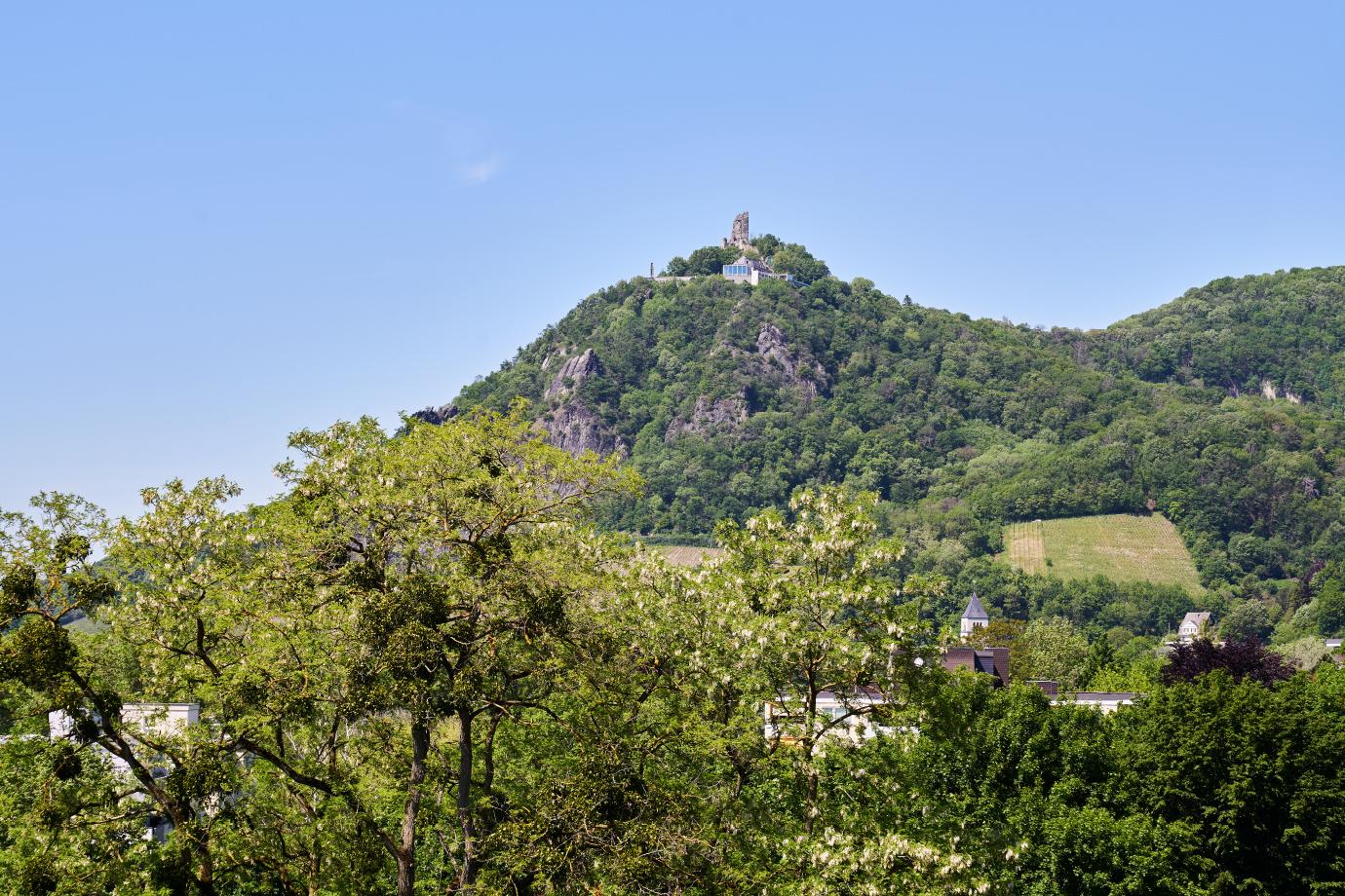 Herrlicher Blick aus unserem Haus auf den Drachenfels