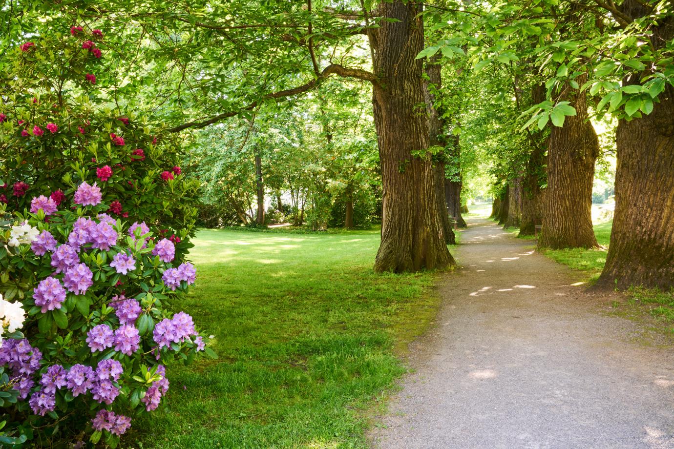 Unser schöner Park