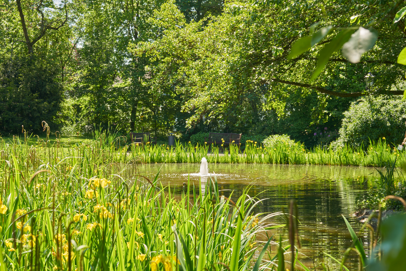 Der große Teich: ein Highlight unseres Parks
